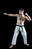 Karate spełniania karate myśliwska postawa zdjęcie stock