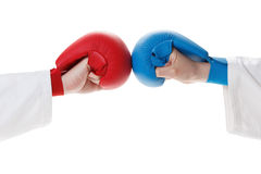 Karate sports glove and fist Stock Image