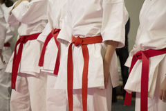 Karate sportsmen with red belts Royalty Free Stock Image