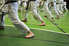 Karate stance. Legs of Karate students in a special stance called Zenkutsu-dachi stock image