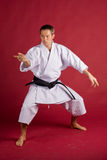 Karate Stance. Male model in karate outfit wearing a black belt (grade), on a red background Stock Images