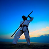 Karate on sunset beach Royalty Free Stock Image