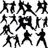 Karate sylwetki wektor Fotografia Stock