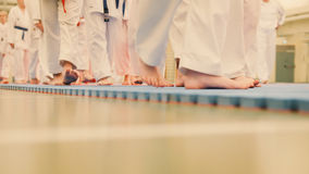 Karate szkolenie - grupa karateka nastolatkowie w kimonie Zdjęcie Stock