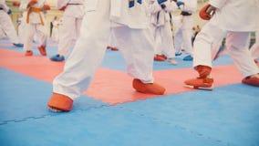 Karate szkolenie - grupa karateka nastolatkowie w kimonie Obrazy Stock