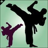 Karate. Taekwon-do. Kung-fu. High kick. Martial arts. Stock Image