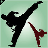 Karate. Taekwon-do. Kung-fu. High kick. Martial arts. Vector. Royalty Free Stock Photo