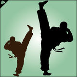 Karate. Taekwon-do. Kung-fu. High kick. Martial arts. Vector. Stock Images