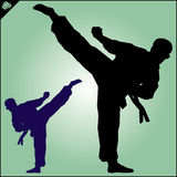 Karate. Taekwon-do. Kung-fu. High kick. Martial arts. Vector. Royalty Free Stock Photography
