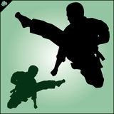 Karate. Taekwon-do. Kung-fu. High kick. Martial arts. Vector. Royalty Free Stock Photos