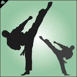 Karate. Taekwon-do. Kung-fu. High kick. Martial arts. Vector. Royalty Free Stock Images