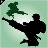 Karate. Taekwon-do. Kung-fu. High kick. Martial arts. Vector. Stock Photography