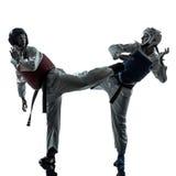 Karate taekwondo martial arts man woman couple silhouette Royalty Free Stock Image