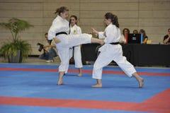 Karate, taza principal europea, técnicas que luchan Imágenes de archivo libres de regalías