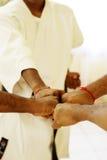 Karate team Royalty Free Stock Photo