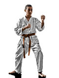 Karate teenagers kid Royalty Free Stock Images
