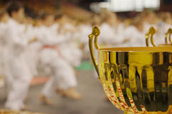 Karate tournament Royalty Free Stock Photos