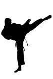 Karate training – silhouette Stock Image