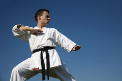 Karate - training Royalty Free Stock Photos