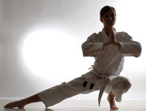 Karate training Stock Image