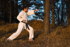 Karate training Royalty Free Stock Images
