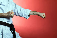 Karate training, exercise at gym Royalty Free Stock Photos