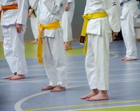 Karate training. Kids are staying straight and waiting for exercices. stock photos