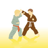 Karate. Stock Images