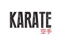 Karate Royalty Free Stock Images