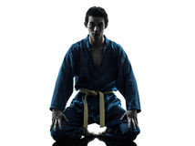 Karate vietvodao Kampfkunst-Mannschattenbild Lizenzfreies Stockfoto
