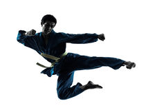 Karate vietvodao martial arts man silhouette. One asian man exercising karate vietvodao martial arts in silhouette studio isolated on white background Stock Photography