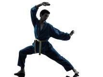 Karate vietvodao martial arts man silhouette. One asian young man exercising martial arts karate vietvodao in silhouette studio  on white background Royalty Free Stock Photos