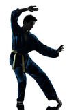 Karate vietvodao martial arts man silhouette. One asian young man exercising martial arts karate vietvodao in silhouette studio isolated on white background Stock Photo