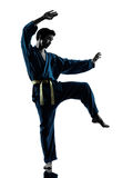 Karate vietvodao martial arts man silhouette. One asian young man exercising martial arts karate vietvodao in silhouette studio isolated on white background Stock Photos