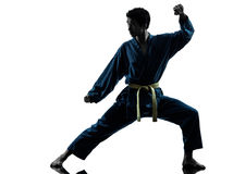 Karate vietvodao martial arts man silhouette Royalty Free Stock Images