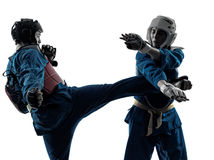 Karate vietvodao martial arts man woman couple silhouette Royalty Free Stock Photos