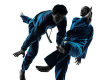Karate vietvodao martial arts man woman silhouette. One  men women couple exercising karate vietvodao martial arts in silhouette studio isolated on white Stock Photography