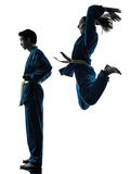 Karate vietvodao martial arts man woman silhouette Royalty Free Stock Photos