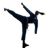 Karate vietvodao martial arts woman silhouette. One caucasian woman exercising karate vietvodao martial arts in silhouette studio isolated on white background Royalty Free Stock Image
