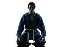 Karate vietvodao sztuk samoobrony mężczyzna sylwetka Zdjęcie Royalty Free