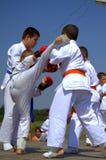 Karate walki Zdjęcia Royalty Free