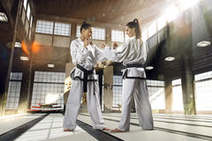 Karate woman in action Royalty Free Stock Photography