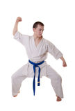 Karateka Royalty Free Stock Image