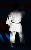 Karateka Stock Photography