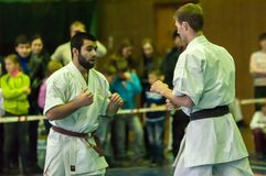 Karateka due Fotografia Stock Libera da Diritti