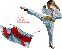 Karateka dziewczyna Zdjęcia Royalty Free