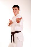 Karateka on a white background. Royalty Free Stock Photos