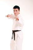 Karateka on a white background. Royalty Free Stock Photography
