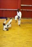 Karatekampf Stockfotografie