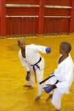 Karatekampf Stockbild